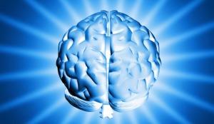 pouvoir du cerveau